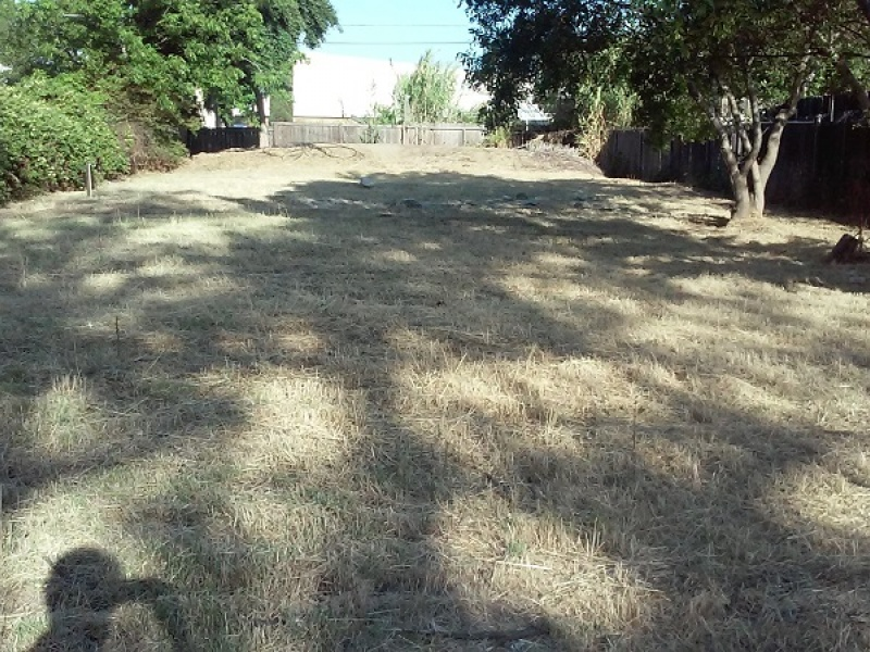 2461 Knoll St.,Sacramento,California,United States 95815,Vacant Lot,Knoll St.,1308